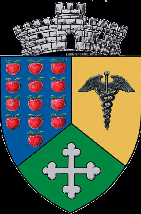 Site-ul oficial al Primăriei Comunei Stoenești, județul Vâlcea
